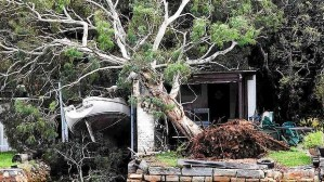 Damage to a waterfront property at Neutral Bay. Photo: Ben Rushton