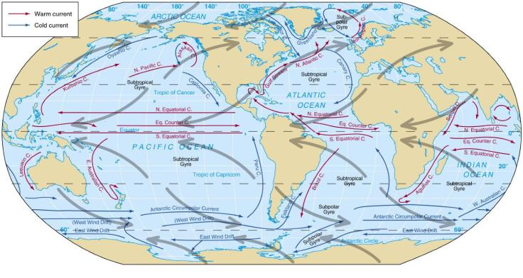 Simple atmospheric and oceanic circulation.