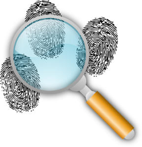 forensic-investigation-md