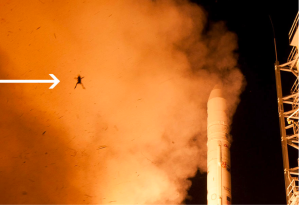 Fig. 2: Photo bombed LADEE launch.  http://www.boredpanda.com/blog/wp-content/uploads/2013/09/frog-photobomb-nasa-launch-2.jpg