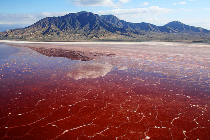 Figure 2. Lake Natron photograph from paulconormckenzie Flickr