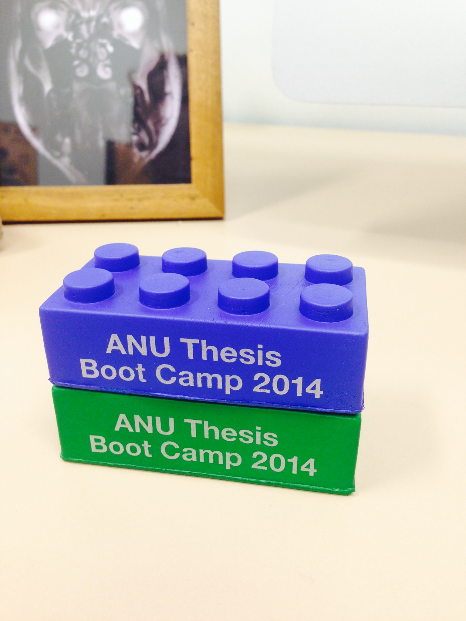 anu thesis boot camp Thesis bootcamp is modelled after a very successful workshop it was the pilot program of what will now be a workshop run four times a year at the anu.