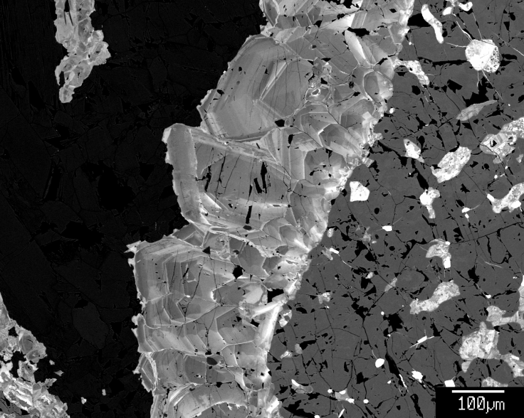 Louise Schoneveld - zoned allanite growing around an apatite clast. Image is a back-scattered electron image