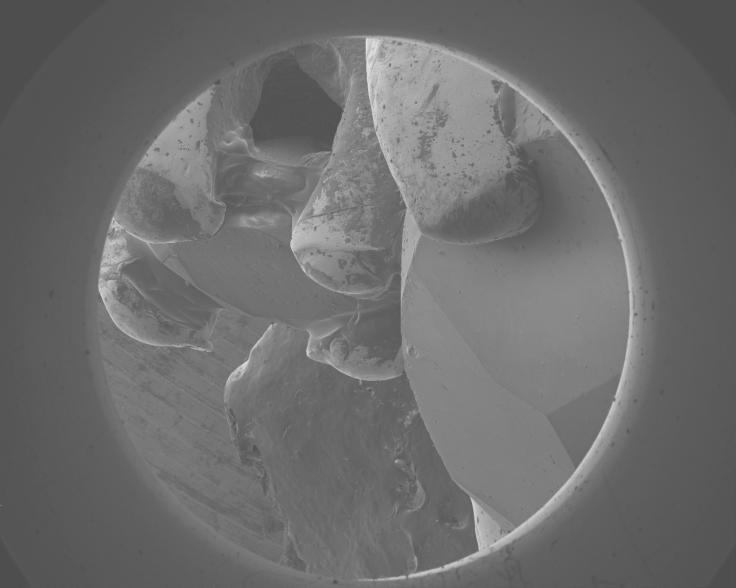 - Michael Anenburg. An Engagement Ring. Taken by scanning electron microscope (SEM)