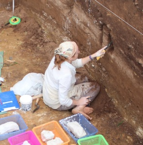 Elle extracting a stratigraphic sample from one of the Neolithis sites in Vietnam