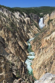 Lower Falls Yellowstone Canyon