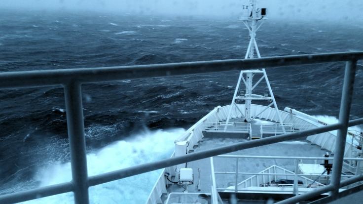Hayden Boat.jpg
