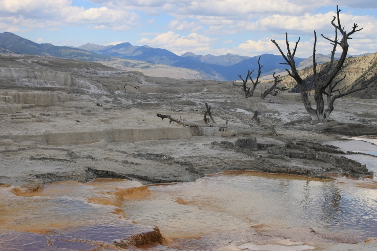 Suzette TIMMERMAN - Mammoth Basin